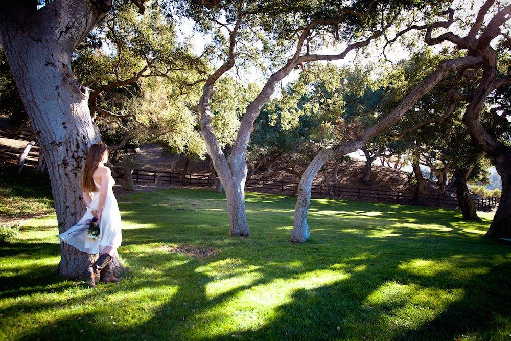 The Oaks Lawn